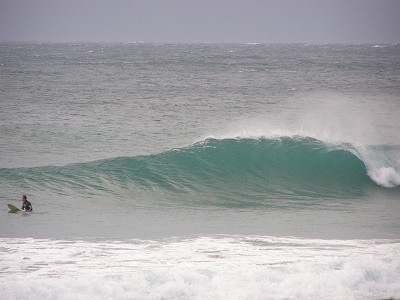 20081112